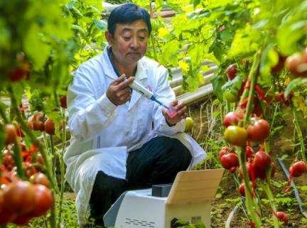 农产品质量安全执法_文章发表