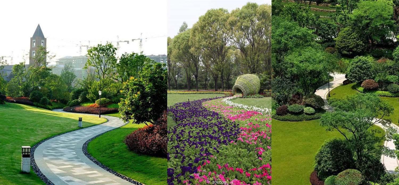 植物独立景观的设计_期刊发表